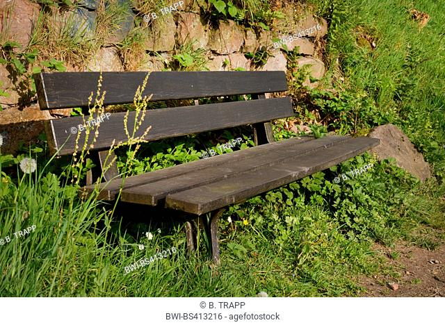 wooden bench in fron of a stone wall, Germany, Odenwald