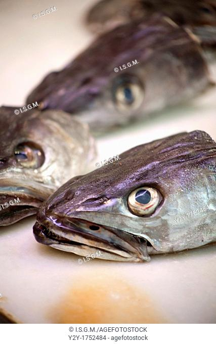 Hake heads on the market
