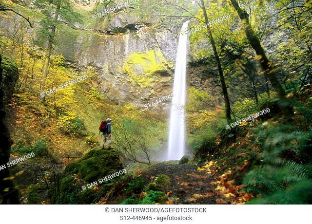 Hiker and Elowah Falls. Columbia River Gorge. Oregon. USA