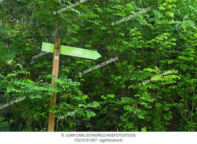 Hiking trail sign, Arbe ravine, Alto Deba - Debagoiena region, Goroeta neighborhood, Aretxabaleta municipality, Gipuzkoa, Basque Country, Spain, Europe