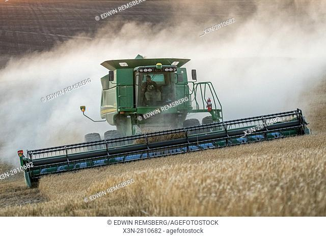 A combine harvester moves through fields of barley grains during a barley harvest in Reardan, Washington