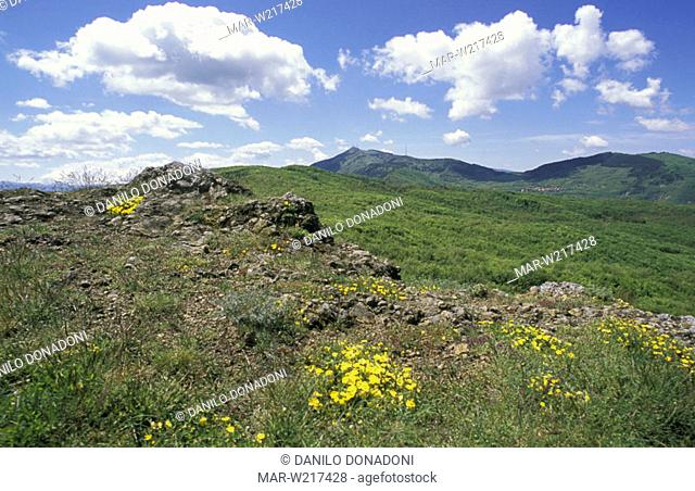 top of the mountain, pietra corva, italy