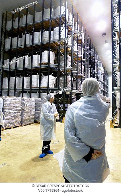 -Tuna's Stocks- Industries of Tuna, Spain