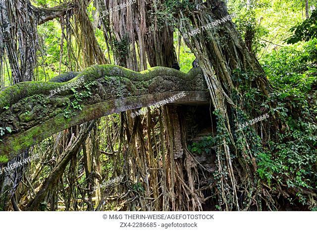 Stone Bridge, Sacred Monkey Forest, Ubud, Bali, Indonesia