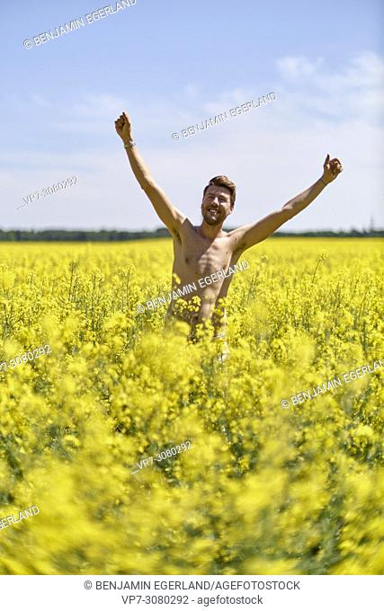 Happy shirtless man laughing in colza field, raising arms. Germany, Bavaria
