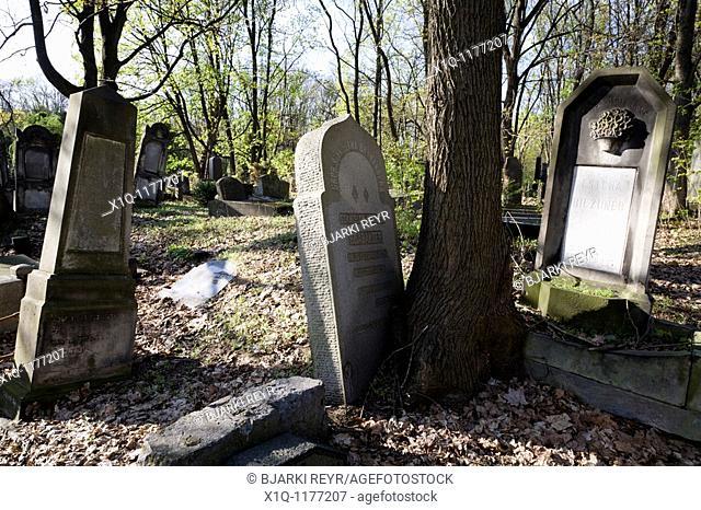 The Jewish cemetery in Okopowa Street  Warsaw Poland