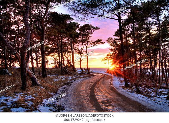 Eksatkusten Gotland Sweden