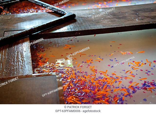 THE MAKING OF PAPER DECORATED WITH FRESH FLOWERS, RICHARD DE BAS PAPER MILL, HISTORICAL PAPER MUSEUM, AMBERT, PUY-DE-DOME, FRANCE