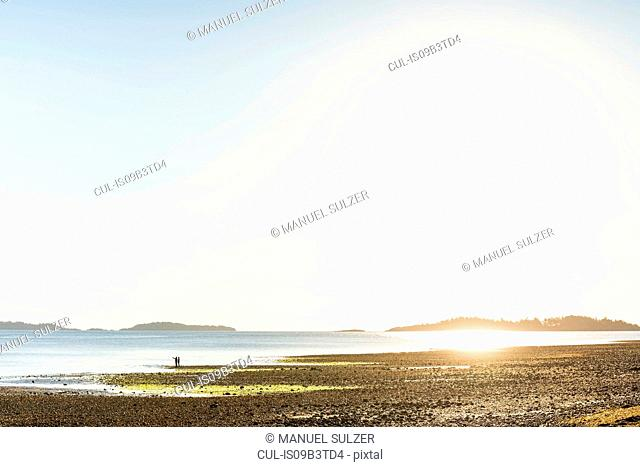 Distant view of couple on beach at Rathrevor Beach Provincial Park, Vancouver Island, British Columbia, Canada
