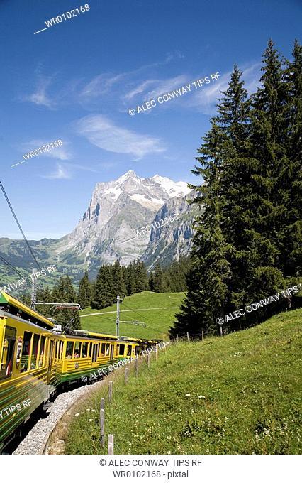 Switzerland, Canton Bern, Berner Oberland, Grindelwald