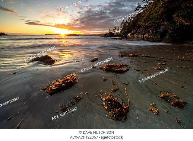 Halfmoon Bay Pacific Rim National Park, Ucluelet, BC Canada