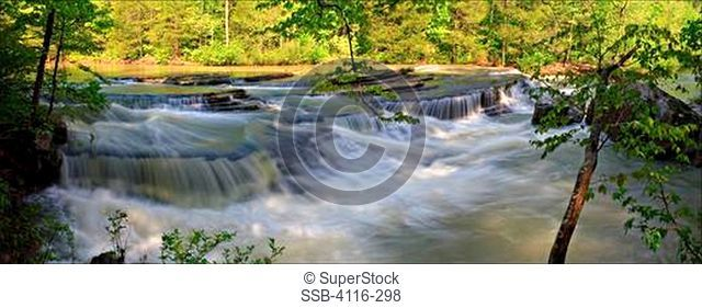 Creek flowing in a forest, Six Finger Falls, Falling Water Creek, Ozark Mountains, Ozark National Forest, Arkansas, USA