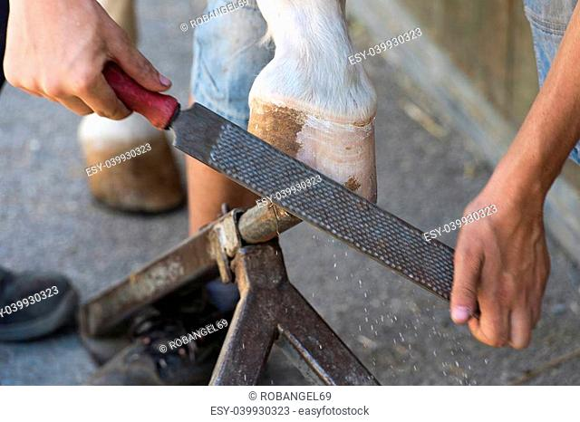blacksmith while changing the iron to a socket