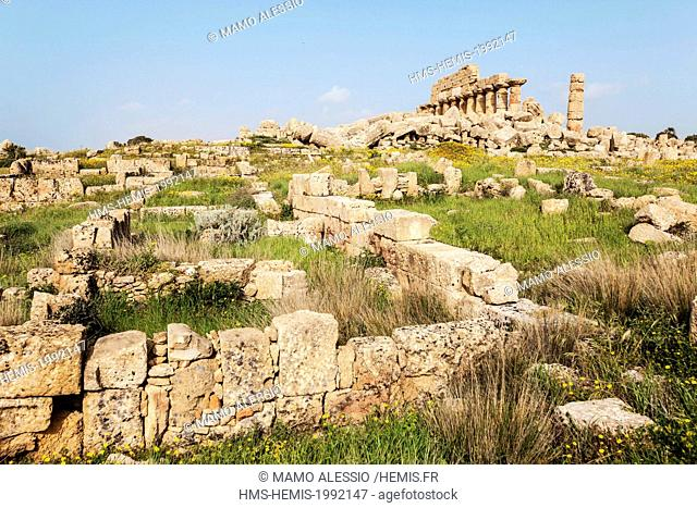 Italy, Sicily, Selinunte, the archaeological park of the ancient greek city, the ruins of the acropolis with the C temple on the back