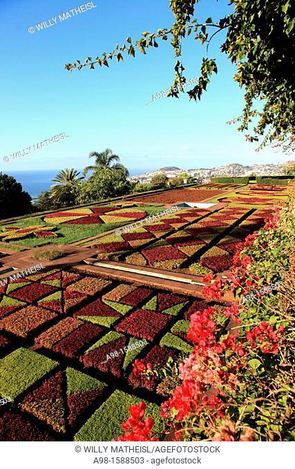 Choreographed garden, Botanical Gardens, Funchal, Portugal, Europe