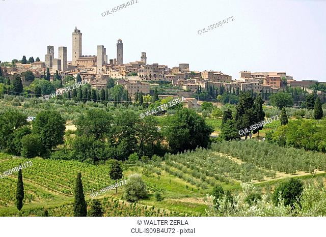 Field landscape with hill town of San Gimignano, Siena, Tuscany, Italy