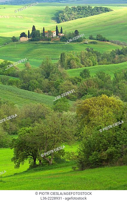 Val d` Orcia Tuscany Italy View from Castiglione d`Orcia