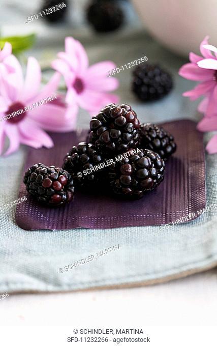 Blackberries and pink margaritas