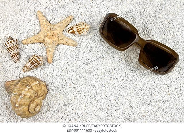 a seastar and several shells in white sand with sunglasses