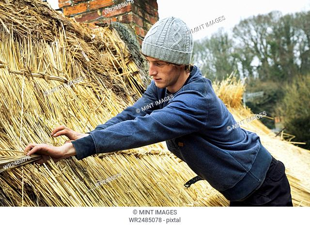 Thatcher standing on a roof, fastening straw at a seam