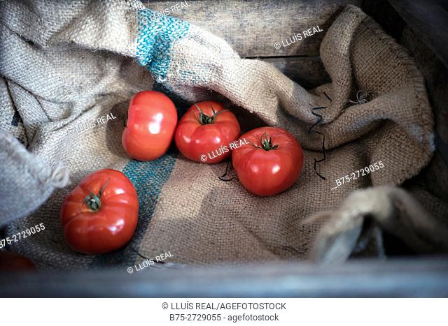Wooden box with sack and four organic red tomatoes