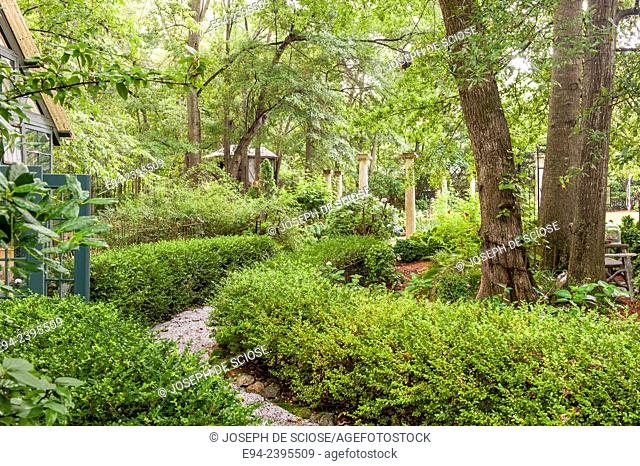 A pathway in a southern garden with hydrangeas and boxwoods.Georgia USA