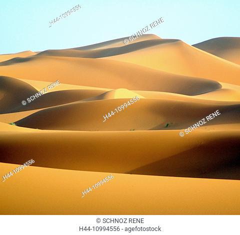 Morocco, desert, sand, dunes, sun, shade, dunes, Sahara, sand dunes, Hamada Mansour