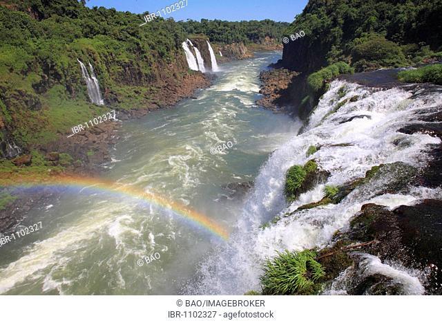 Rio Iguaçu river passing through Brazilian rainforest, Parana, Brazil, South America