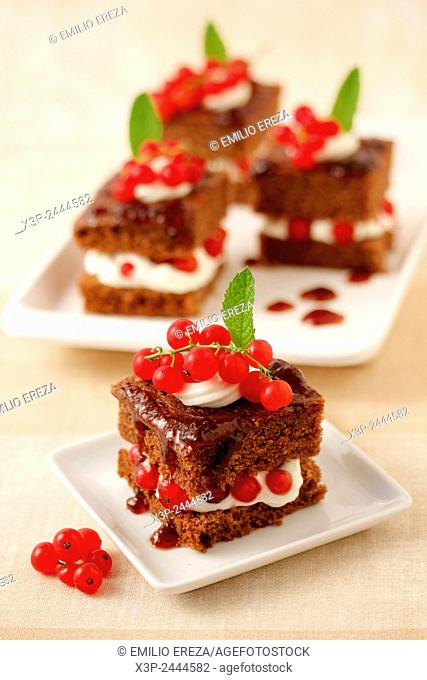 Chocolate sponge cake with red currants.