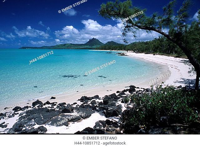 10851712, Mauritius, island, Ile aux Cerfs, Indian