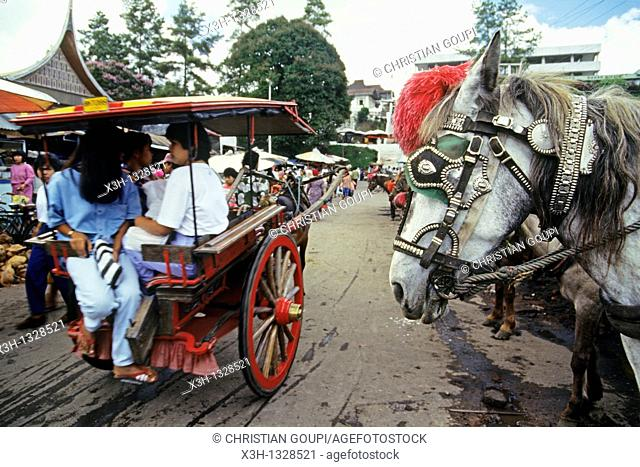 'dokar' horse-drawn carriage, Sape, Sumbawa island, Lesser Sunda Islands, Republic of Indonesia, Southeast Asia and Oceania