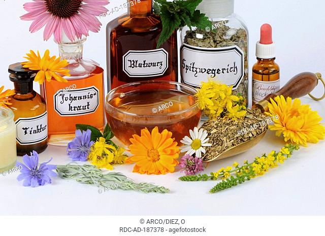 Herb tea and different tinctures with Marigold, Chicory, Peppermint, Lady's mantle, St. John's Wort, Sage, Yarrow, Cornflowe, Agrimony