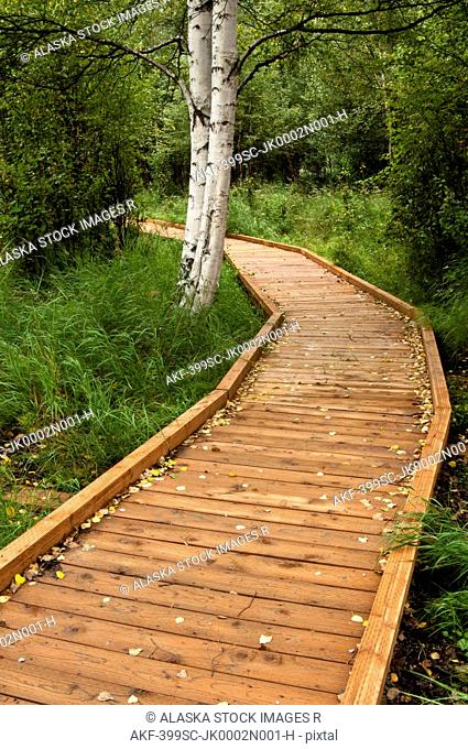 Boardwalk trail winds through the Helen Louise McDowell Sanctuary in Anchorage, Southcentral Alaska, Summer