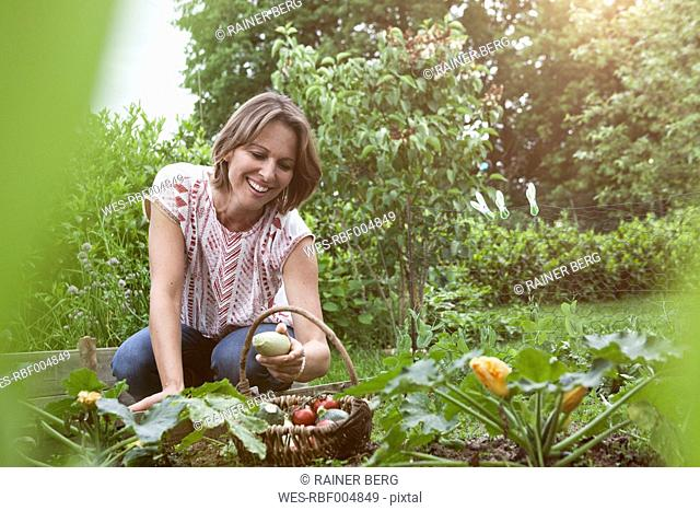 Smiling woman in garden harvesting vegetables