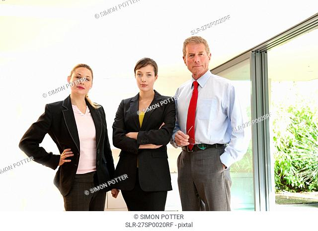 Confident business trio in light office