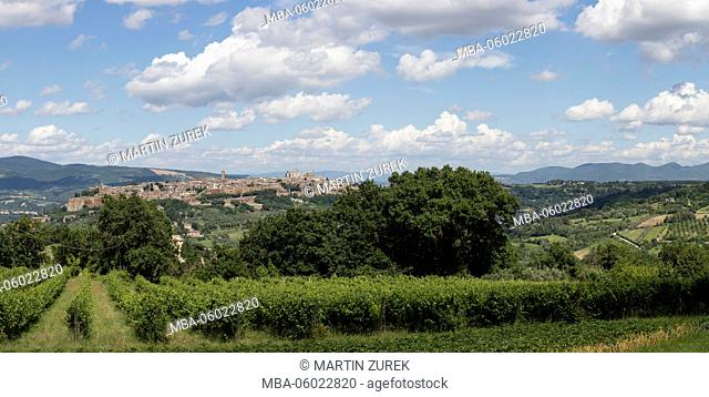 townscape of Orvieto of the surrounding vineyards, Italy, Umbria, panorama