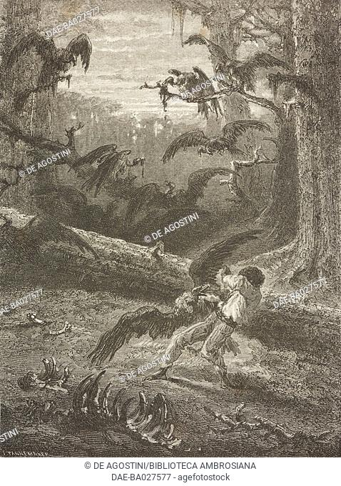 A man being attacked by vultures, Florida, United States of America, drawing from Four months in Florida, 1851-1852, by Achille Poussielgue (1829-1869)