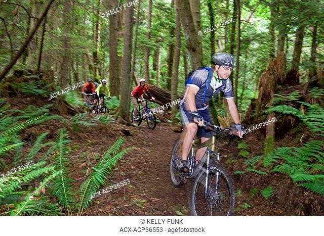 A group of mountain bikers hit the trail in Powell river, on the upper Sunshine coast of the Vancouver coast and mountain range, British Columbia, Canada