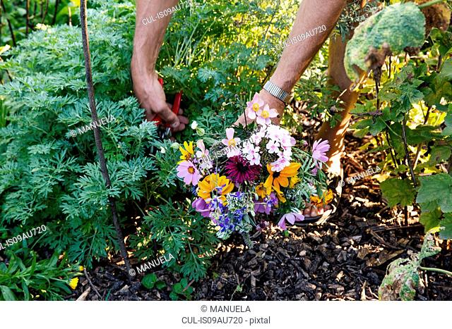 Mature woman gardening, low section