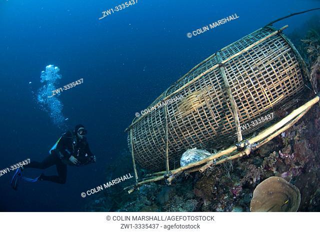 Diver with fish trap, Batu Pantar dive site, Pantar Island, near Alor, Indonesia