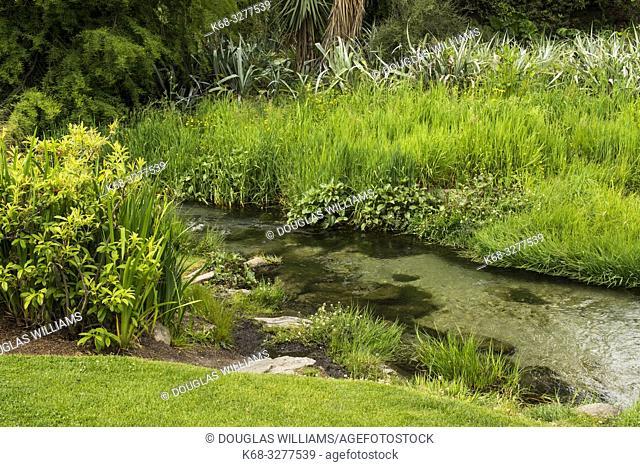 garden in Queenstown, South Island, New Zealand
