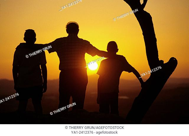 Italy, Sicily, Ravanusa, great father watching sunset near olive tree with two grandsons