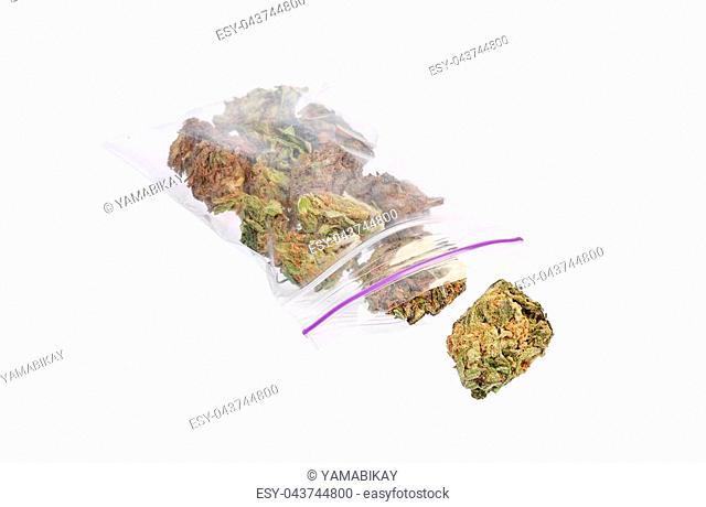 Close up of marijuana plant. Macro photo