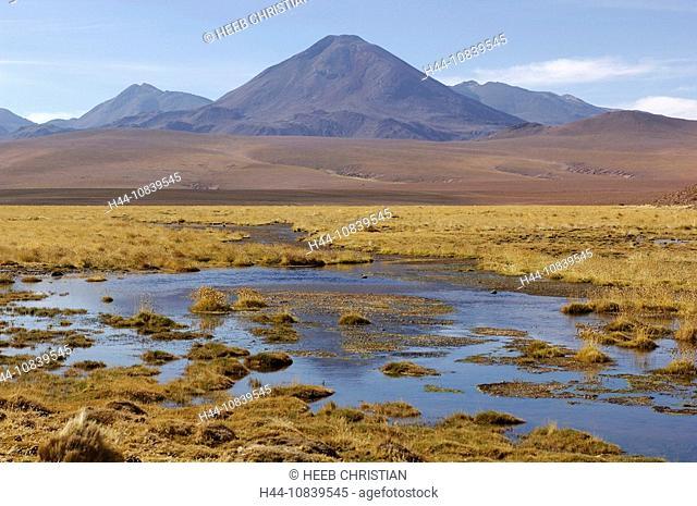 Chile, South America, Andes Mountains, Vado Rio Putana, near San Pedro de Atacama, Altiplano, Antofagasta, landscape