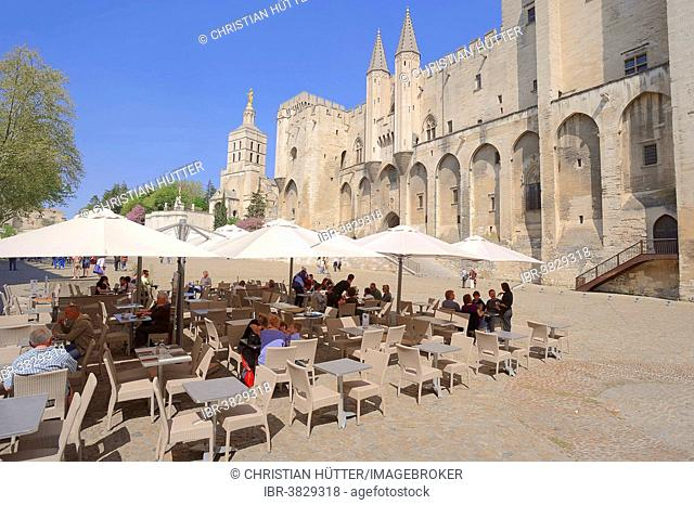 Sidewalk cafe in front of the Palais des Papes or Papal Palace, Avignon, Vaucluse, Provence-Alpes-Cote d'Azur, Southern France, France