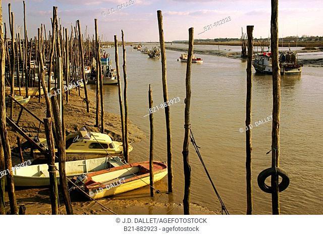 Fishing harbour, L'Aiguillon-sur-Mer, Vendee, Pays de la Loire, France