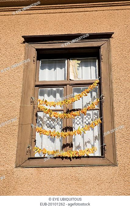 Strings of yellow and orange chili peppers hanging from wooden window frame of house in the old town to dry in the summer sunshine