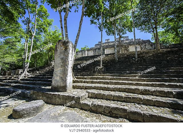 Stelae and structure at Mayan city of Calakmul, Calakmul Biosphere Reserve, Campeche, Mexico
