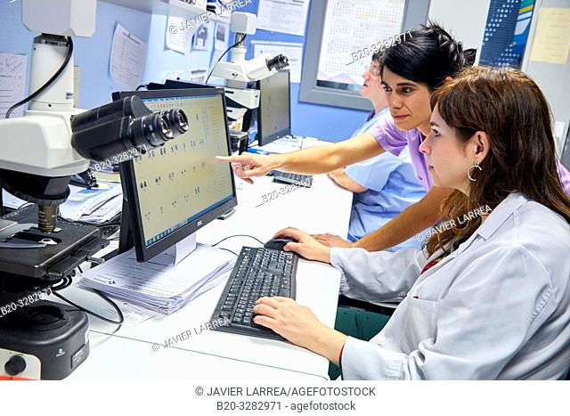 Genetic analysis, Hematology, Hospital Donostia, San Sebastian, Gipuzkoa, Basque Country, Spain