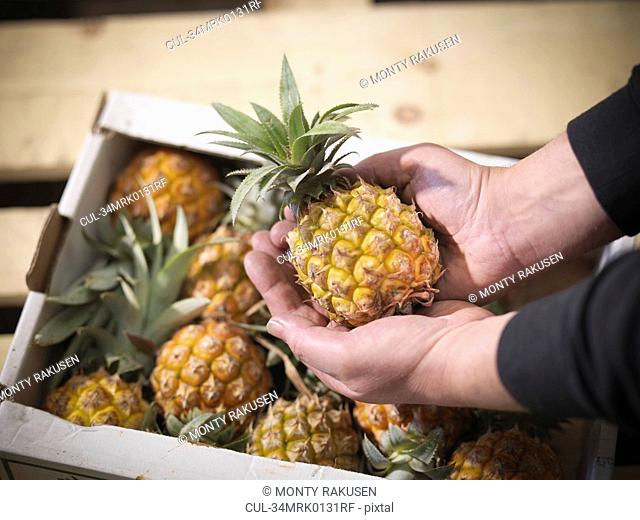 Close up of grocer holding pineapple